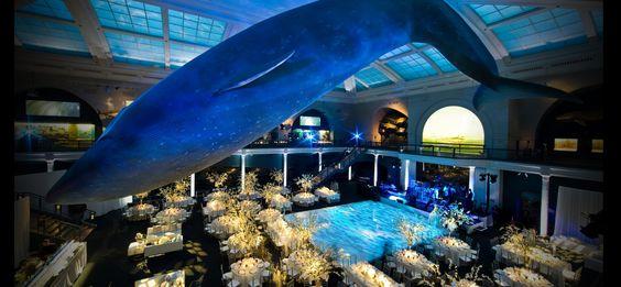 Museum of Natural History Wedding-- New York, NY