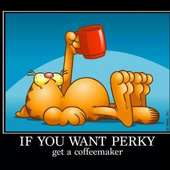 If you want perky...