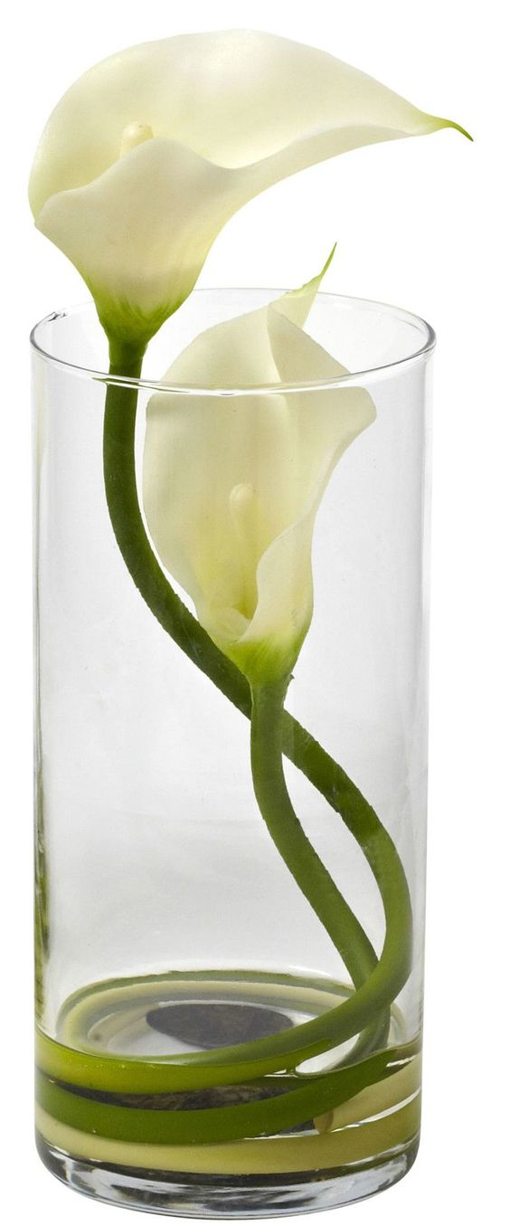 Double Calla Lily in Glass Cylinder - It would make a lovely, simple centerpiece.: