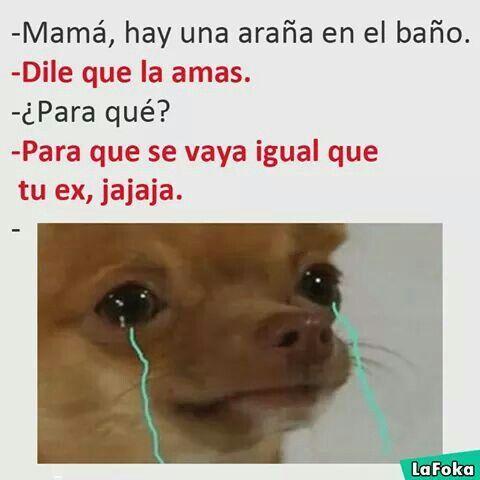 Cruel Jajajajaja Spanishhumor Funny Spanish Memes Mexican Funny Memes Memes