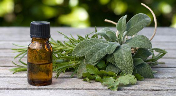 Les huiles essentielles les plus efficaces sont l'huile essentielle de Palmarosa, l'huile essentielle de Cyprès, l'huile essentielle de Géranium odorant et l'huile essentielle de Sauge sclarée.
