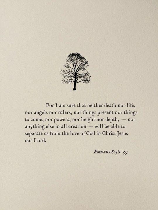 Romans 8:38 - 39