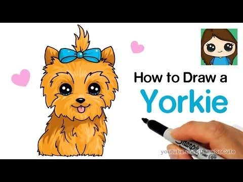 3 How To Draw A Yorkie Easy Jojo Siwa S Bowbow Youtube Kawaii Drawings Kawaii Girl Drawings Cartoon Drawings