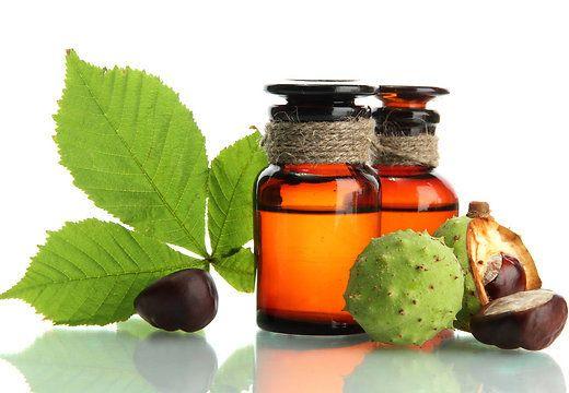 Tervisenipid: kastanimunad ravivad liigesepõletikku ja närvivalu - Alkeemia