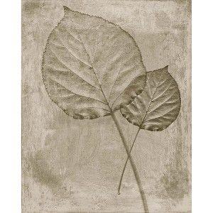 "Pressed Leaves 3 Wall Art - 11x14"" : Target Mobile"