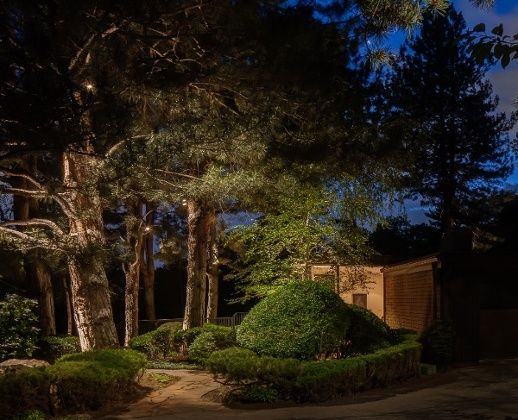 Tree Lighting Ideas 4 Concepts For Lighting Your Evergreens Pine Trees In Your Landscape Outdoor Tree Lighting Tree Lighting Low Voltage Outdoor Lighting