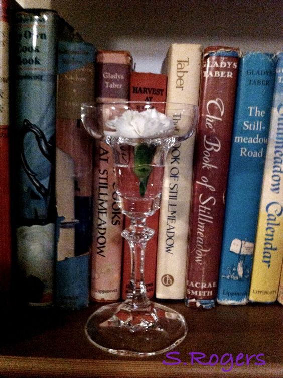 White carnation in a crystal candleholder, on the bookshelf that holds some of my Gladys Taber collection.                 #gladystaber #stillmeadow #stillcove #capecod                        ~ S.Rogers