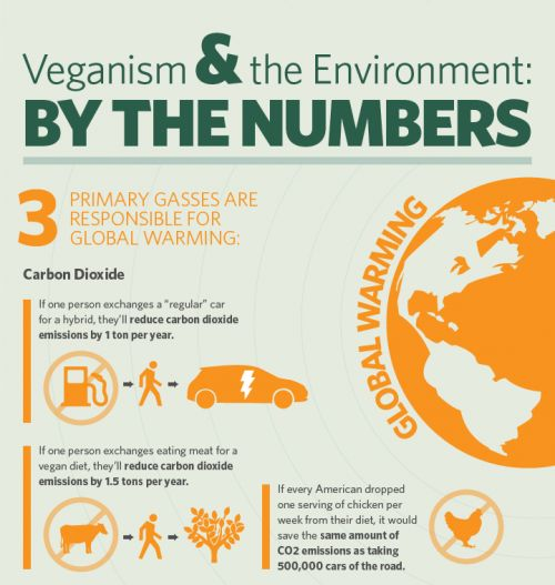 Excellent vegan infographic on how veganism can help the ...
