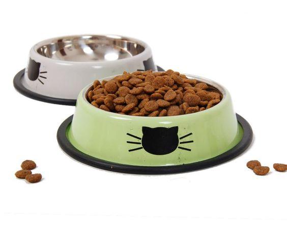 Cat Behavior Specialist Cat Food Dish Cat Food Bowl Best Cat Food
