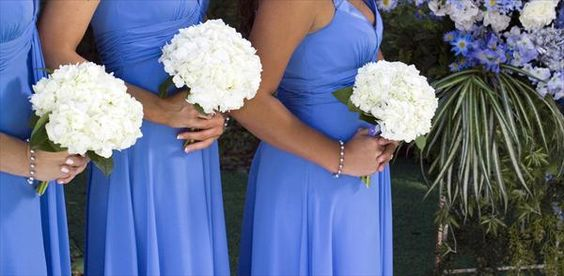 Cornflower Blue Wedding Theme   ... cornflower blue short dresses with white hydrangea bouquets tags blue