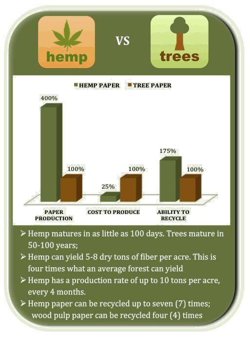Image result for hemp vs. trees
