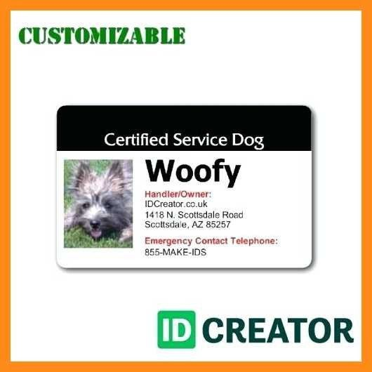 Service Dog Identification Card Template New 12 13 Microsoft Word Id Badge Template Service Dogs Dog Identification Dog Id