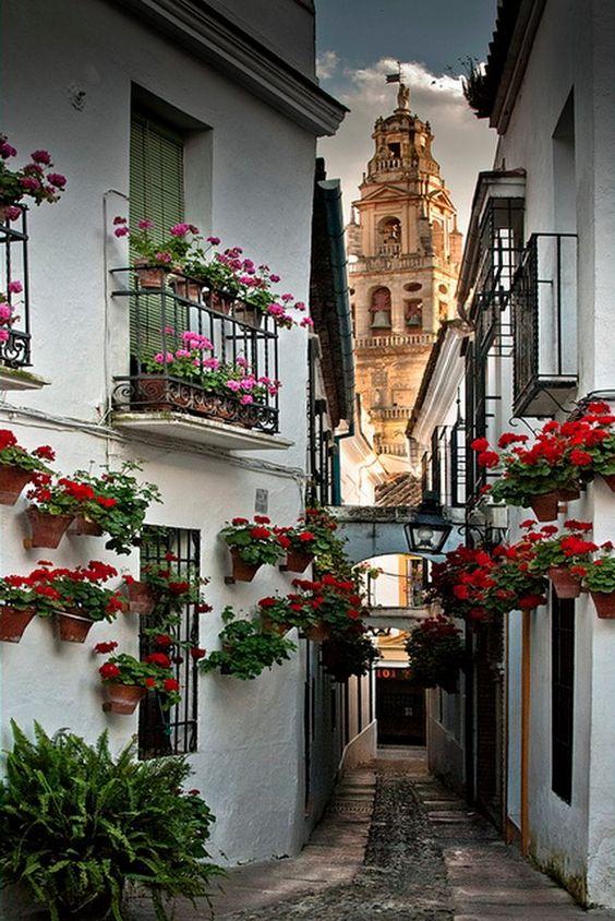 Callejón del beso, Guanajuato, México  Checked off my bucket list! ✔️