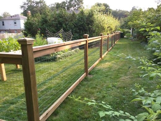 Cedar fence with pressure treated posts and 3 ft welded wire sandwiched between 1x4s along the top and 1x2s along the sides of the panels. WoodRx ultra stain, walnut color. Post caps from Home Depot.