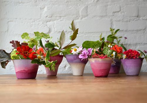 Saw these dip dye flower pots on designsponge and drooled a little bit...