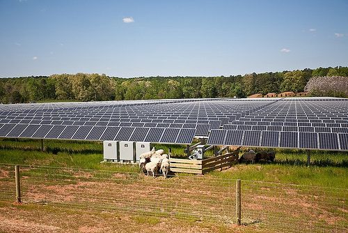 Solarfarmhorne Solar Farm Advantages Of Solar Energy Solar Companies