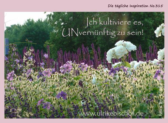 Die tägliche Inspiration No.315 www.inspirationenblog.wordpress.com www.ulrikebischof.de