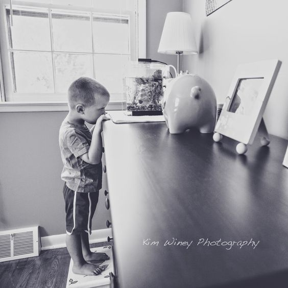 The Blog of Kim Winey | real life. your life. | toddler | boy | fish | black and white