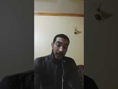 صوت مصر الحرة مباشر مشعل بعد ان ادعى انه المندى والمسيج هل وصل للالحاد Blog Blog Posts John