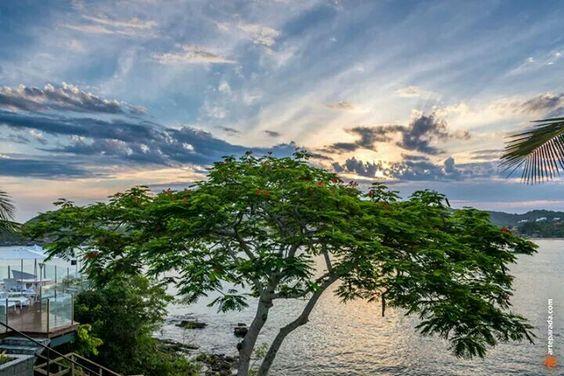 Búzios - Rio de Janeiro, Brasil. www.arteparada.com www.facebook.com/arteparada  #rj #riodejaneiro #buzios #sky #nature #tree #cloud #landscape #sunset #dawn #dusk #twilight #sea #reflex #water