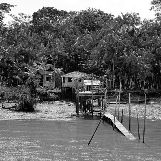 PALAFITA   Baía de Guajará   Pará   Brasil