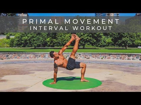 Primal Movement Challenge Workout High Intensity Mobility Follow Along No Equipment Youtub Primal Movement Workout Challenge Workout Training Programs