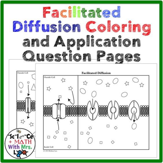 Cell Transport Facilitated Diffusion Coloring Page and