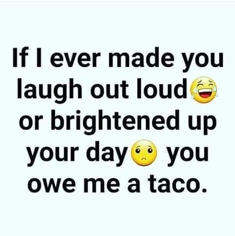 Home Dollars For Tacos Taco Humor Funny Quotes Taco Quote