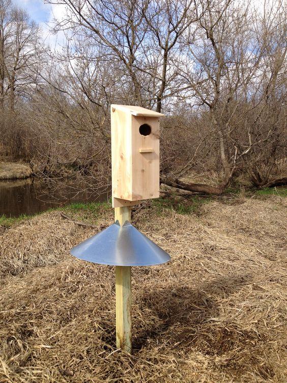 Duck House Ducks And House On Pinterest