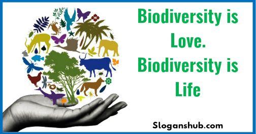 27 Catchy Biodiversity Slogans Biodiversity Slogan Catchy Slogans