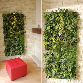 Google on pinterest - Mur vegetal interieur diy ...
