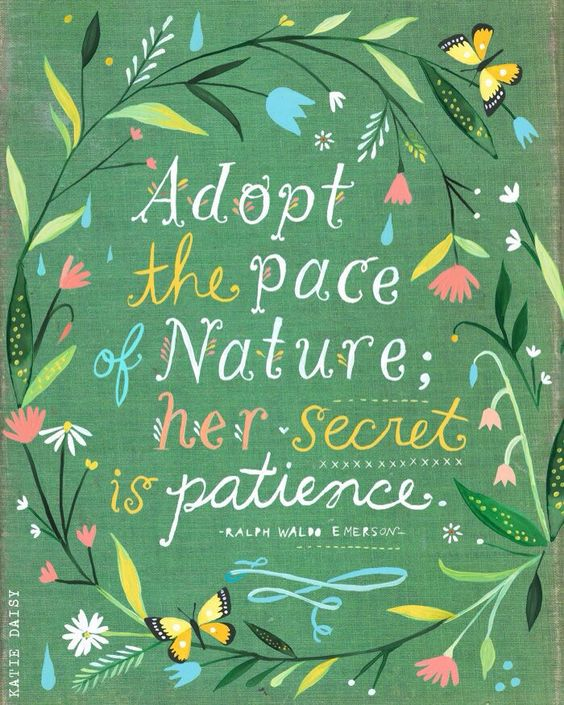 Emerson quote: Adopt the pace of nature. #quote #emerson #katiedaisy