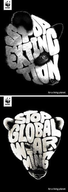 pinterest.com/fra411 #beauty - #typography - WWF: