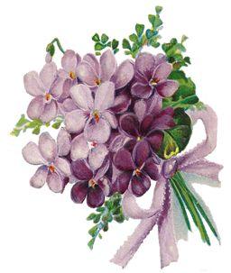 http://3.bp.blogspot.com/-1qjOrPvelb4/TxjycQCcLfI/AAAAAAAACD4/Lhy4Yw8S434/s1600/Violets+LFD.png: