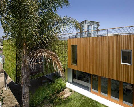 contemporary home with wooden wall and rooftop garden