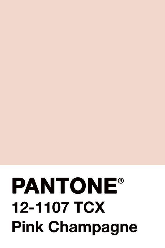 Beige Sublime Couleur Pantone Pantone Nuancier Pantone