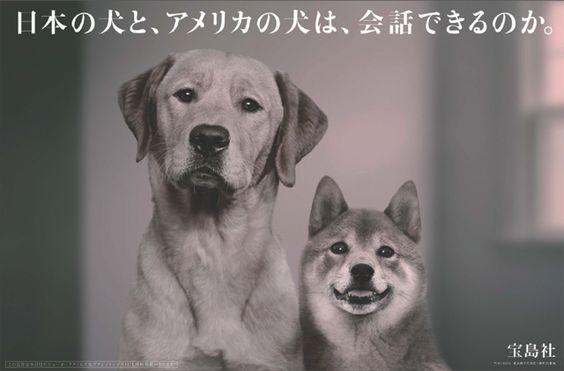 宝島社が企業広告を日米同時に新聞掲載 出版社初 の画像