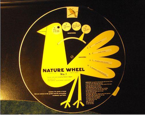 nature wheel