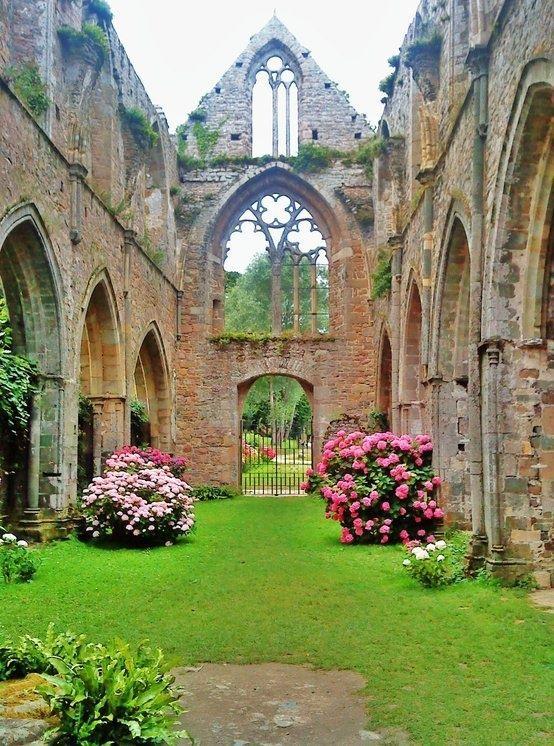 Super atmospheric simple garden with lush pink hydrangeas