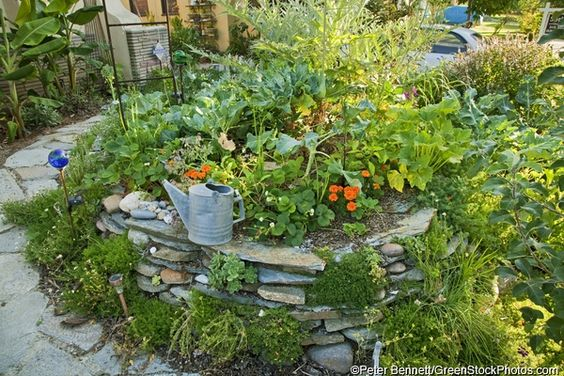 Permaculture garden landscaping pinterest gardens for Permaculture garden designs