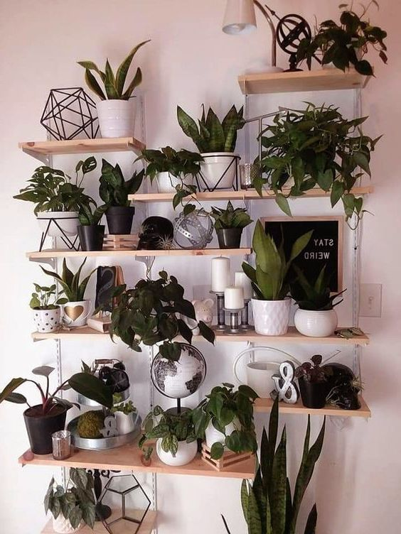 60 Amazing Wall Planter Ideas For Gardens Kitchen Decoration Ideas Diy Plants Decor Living Room Wall Designs Plant Decor