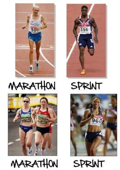 Marathon Runner's Body Versus Sprinter's Body