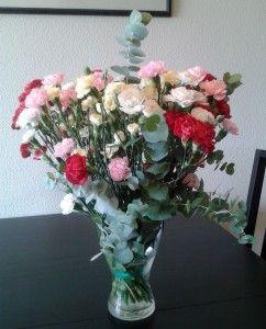 Ramo de clavelinas: Vase, De Clavelinas, Plants, Estilo Y Pelo, Flowers