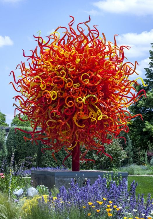 Chihuly summer sun 2010 installed 2014 denver botanic gardens glassware chihuly for Chihuly garden and glass hours