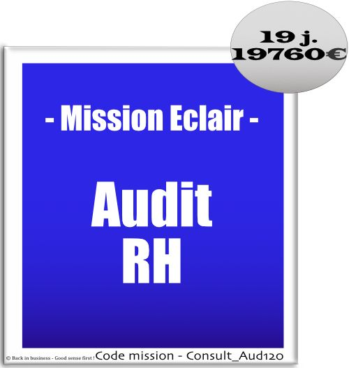 Audit RH.