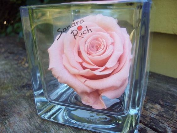 Parce que je t'aime <3 http://www.artifleurs-fleurs-artificielles.com/boutique/fleurs-naturelles-preservees/ #artifleurs #décoration #cadeau #fêtedesmères #fleur #rose #stabilisé