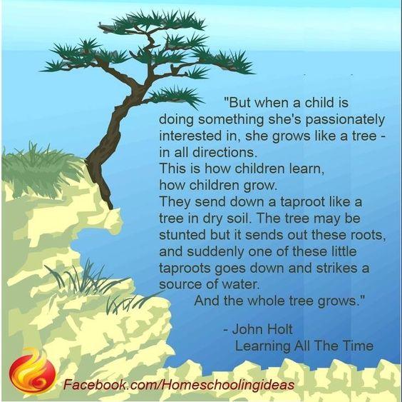 How a child learns, John holt
