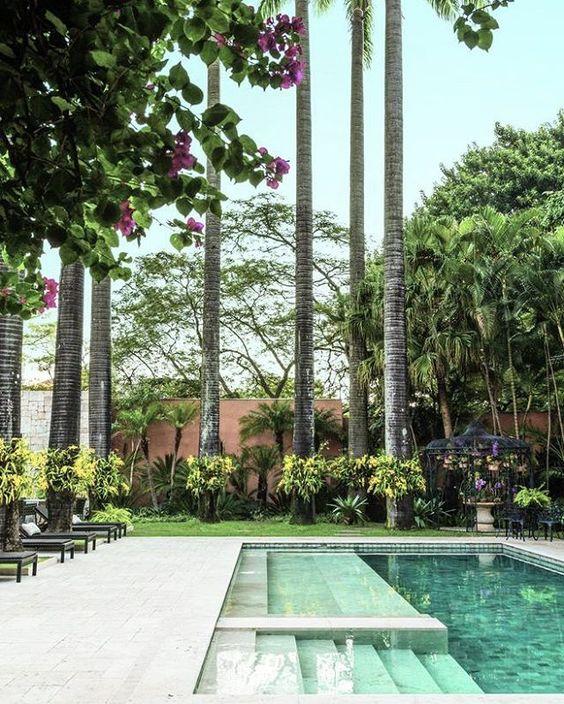 #nasbancas Uma diversidade de espécies compõe este vibrante jardim de Gilberto Elkis (@elkispaisagismo). Em volta da piscina, as palmeiras contam com orquídeas chuva de ouro nos troncos. #revistacasaclaudia #jardim #garden #verde #green #paisagismo #landscape #piscina #pool @gilbertoelkis