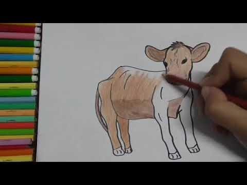عالم الحيوان 2 Youtube Animal Drawings Animals Moose Art