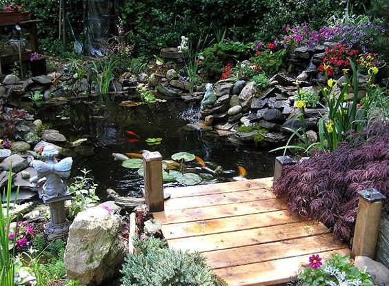 Small pond docks decorative and practical garden pond for Fish pond supplies near me